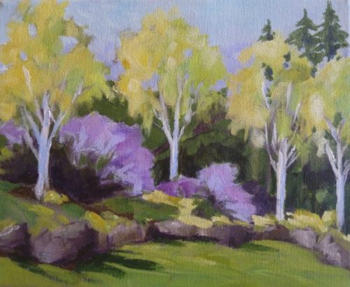 Birch Trees at Van Dusen 8 x 10 acrylic on canvas