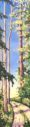Forest Path 12 x 48, acrylic on canvas - sold