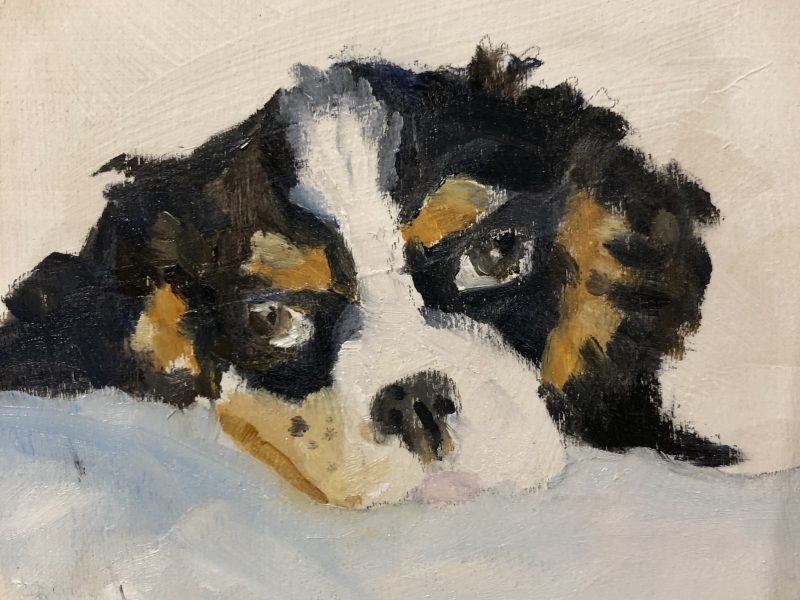"""<span class=""""entry-title-primary"""">King Charles Spaniel,</span> <span class=""""entry-subtitle"""">4 x 4, oil on panel</span>"""