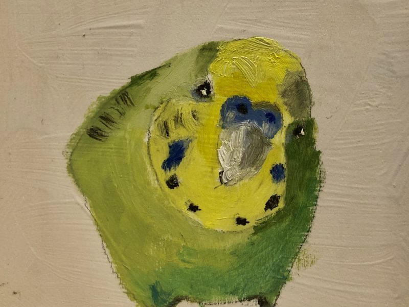 "<span class=""entry-title-primary"">Budgie, What's Up? – Sold</span> <span class=""entry-subtitle"">4 x 4, oil on board</span>"
