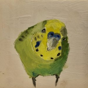 Budgie, What's Up? – Sold 4 x 4, oil on board